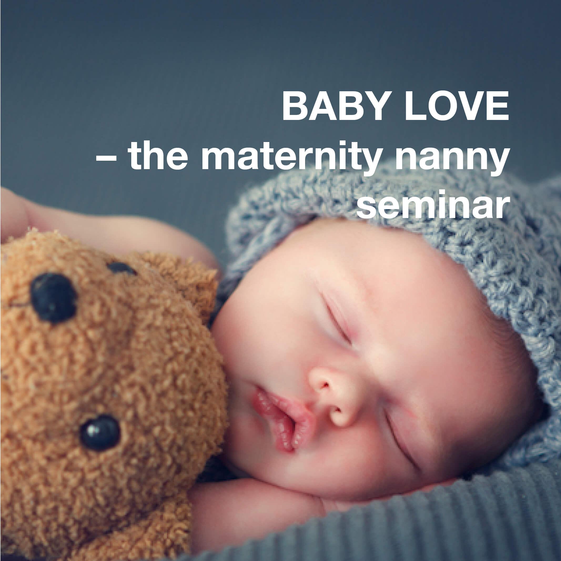 Seminar maternity nurses in private households